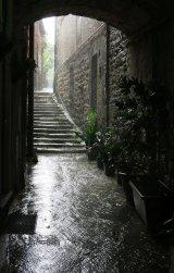 Com Italian Rain : Ray McKenna