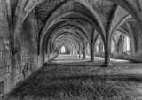 C Fountains Abbey cloisters - John Twizell