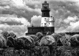 C Seal Island - Peter Burnham