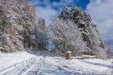 C Winter has arrived - Michael Proctor
