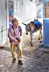 Com Donkeywork - Alan McCormick