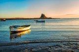 Dawn at Holy Island