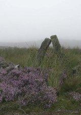 Rothbury Moor