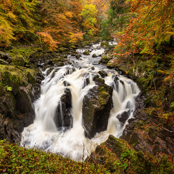 Hermitage Falls