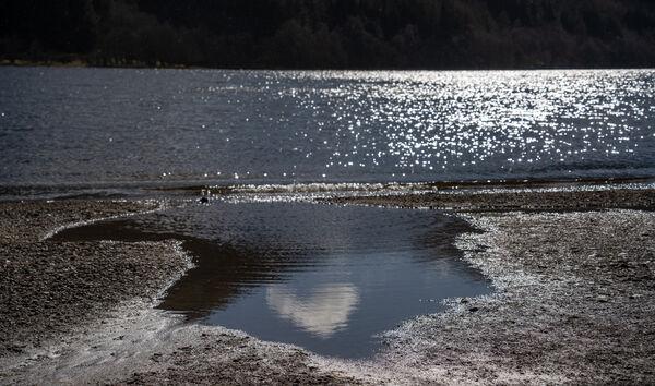 Shimmering Loch