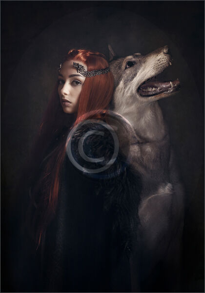 18 SANSA AND LADY by Lee Odell