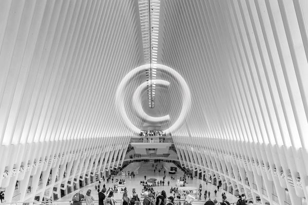 19 THE OCULUS by Peter Rees