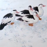 Ducks in the Snow, 60x60cm, oil on canvas, £750