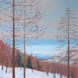 Larches in the Snow, 40x60cm, oil on canvas, £650