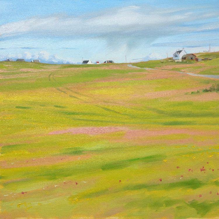 Machair, Balevullin, 50x50cm, oil on canvas, £650