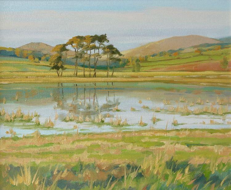 Pines Near Broughton, 25x30cm, oil on canvas, £340