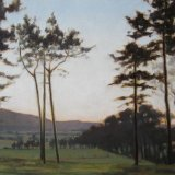 Slender Pines near Tinto, 28x42cm, oil on board, £420