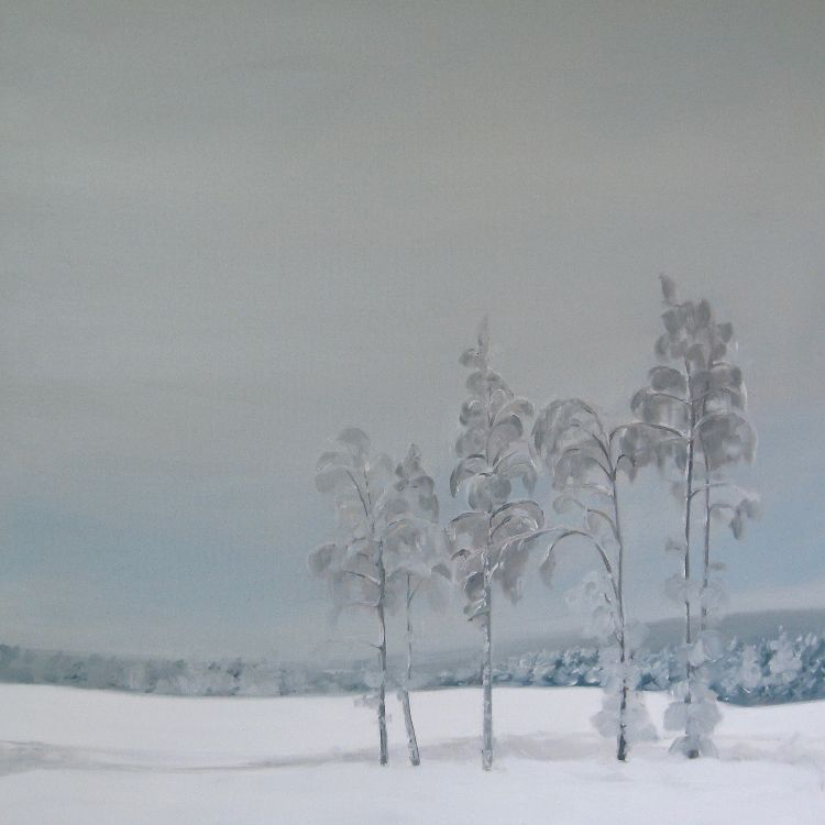 Winter Birches, 60x60cm,  oil on canvas, £750