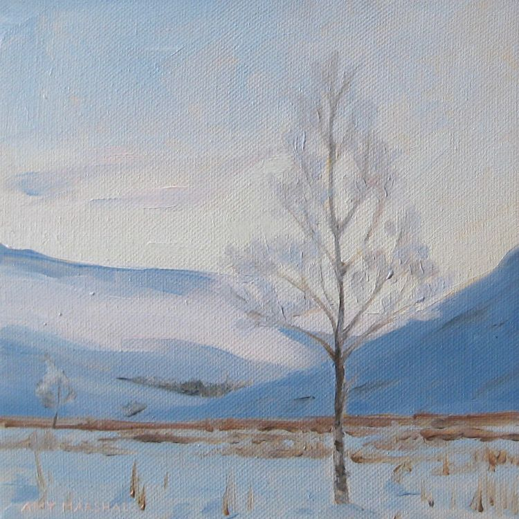 Young Birch, Glen Isla, 20x20cm, £295