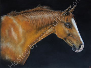 Horse pastel