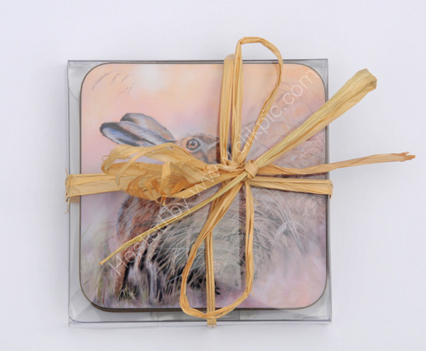 Coaster gift box- holds up to five coasters
