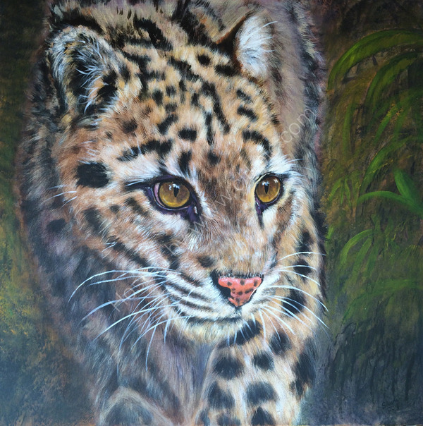 Clouded Leopard in acrylic on box canvas.  Original photograph by Emmanuel Keller used with his kind permission