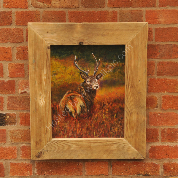 """The Stag"" showing how lovely he looks on a wall!"