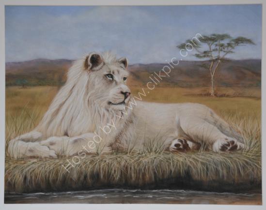White lion pastel