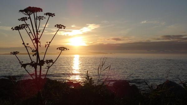 Sundown over Annet