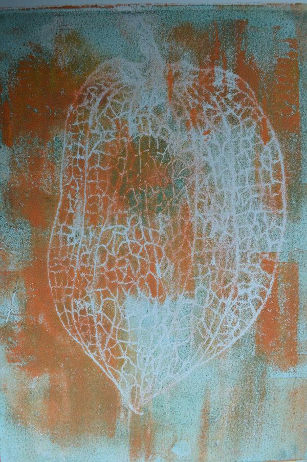 physalis in orange