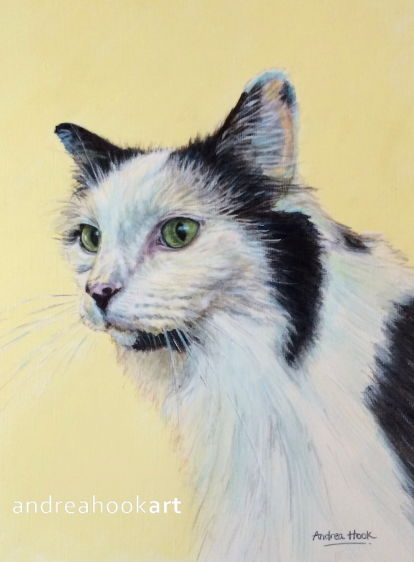 A portrait of a cat by Andrea Hook
