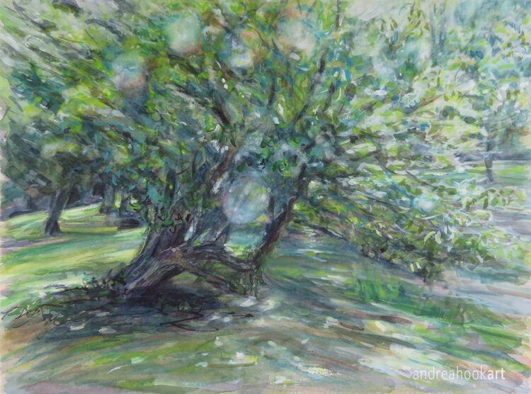 The Old Orchard, Cranborne Manor