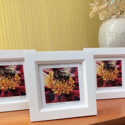 Buff-tailed Bumblebee mini framed print