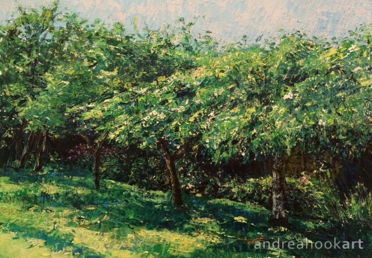 An original impasto painting of trees in an orchard by Dorset Artist Andrea Hook
