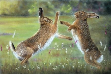 Boxing Hares - SOLD