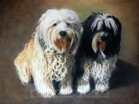 Harvey and Mutley - Tibetan Terriers