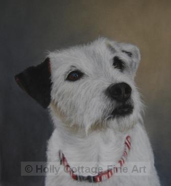 Milly - Jack Russell Terrier