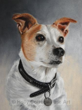 Scamp - Terrier