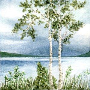 Lough Allen II