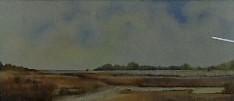 Marshland by Hermione Ward