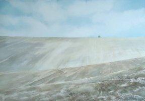 Winter Field by Laura Jolliffe