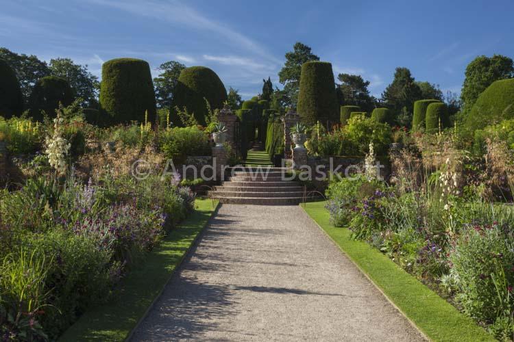 Carolleon Garden