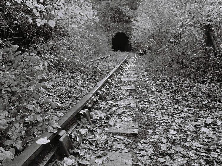 Tidenham Tunnel, Gloucestershire