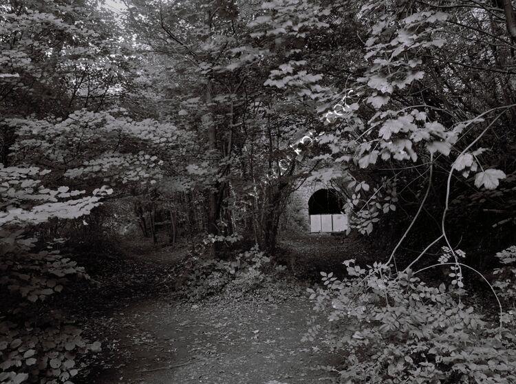 Tintern tunnel, Gloucestershire
