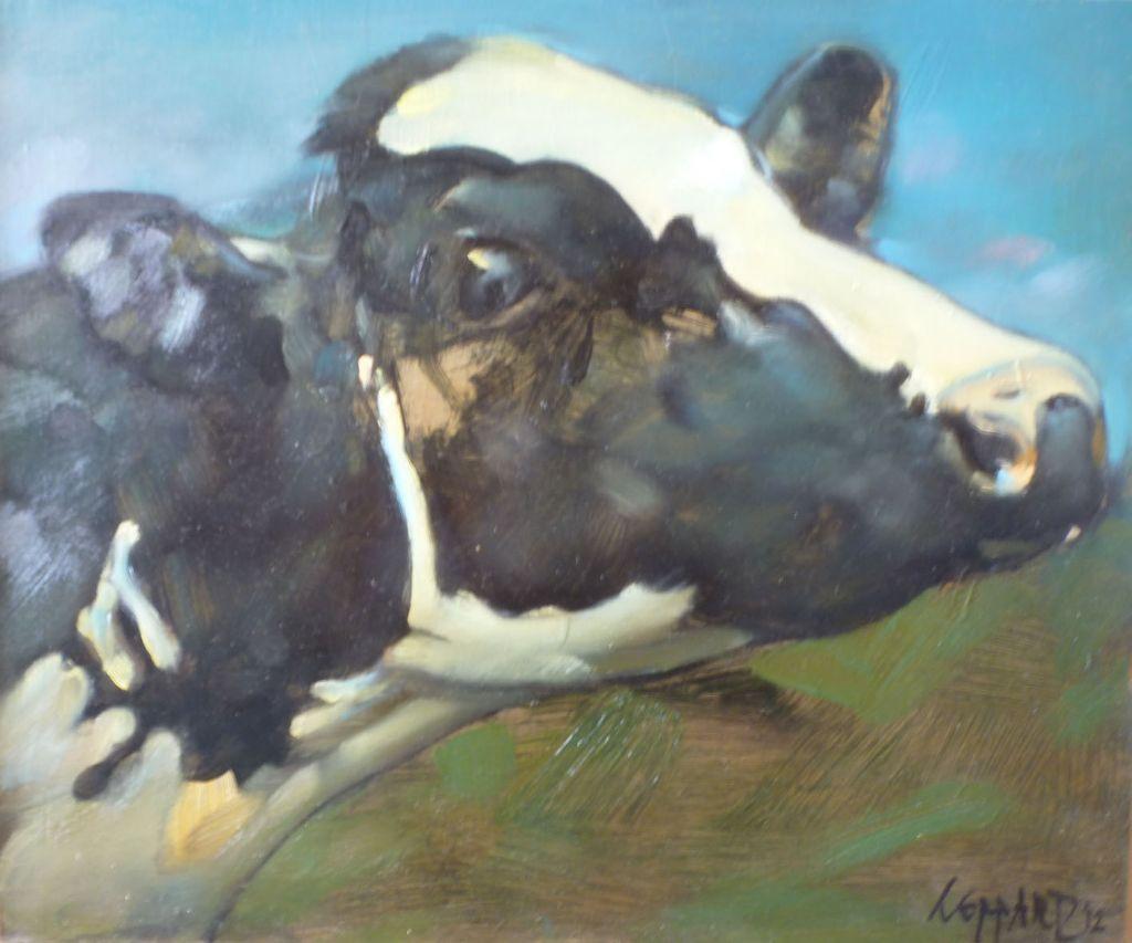 cow_sideglance