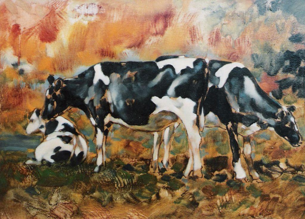 pastoral_cows