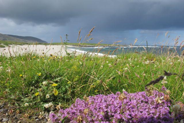 West coast, machair and beaches