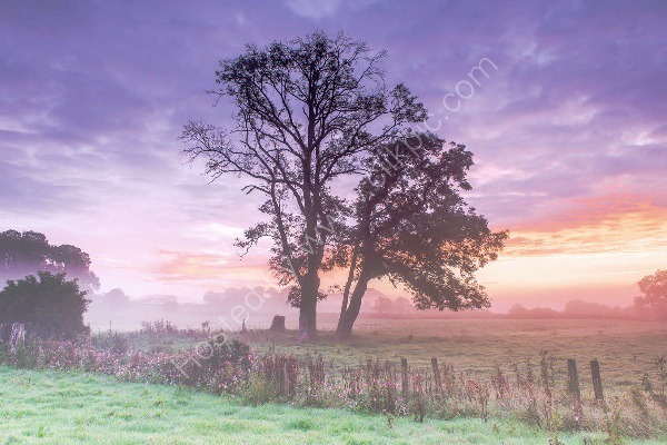 03 Misty Early Autumn Sunrise In The Towy Valley