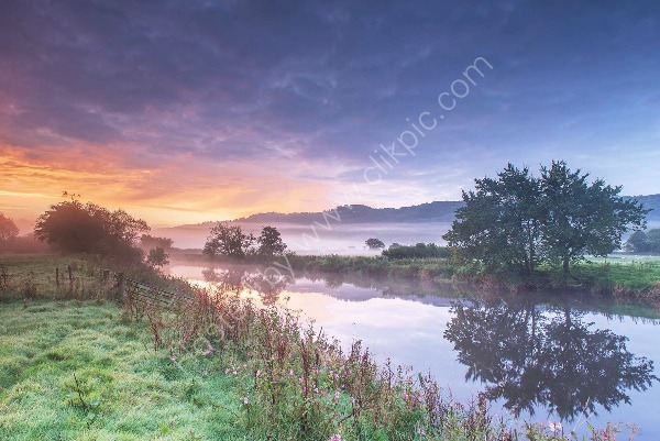 159 The River Towy In Carmarthenshire