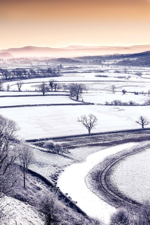 198 Hoar Frost In The Towy Valley