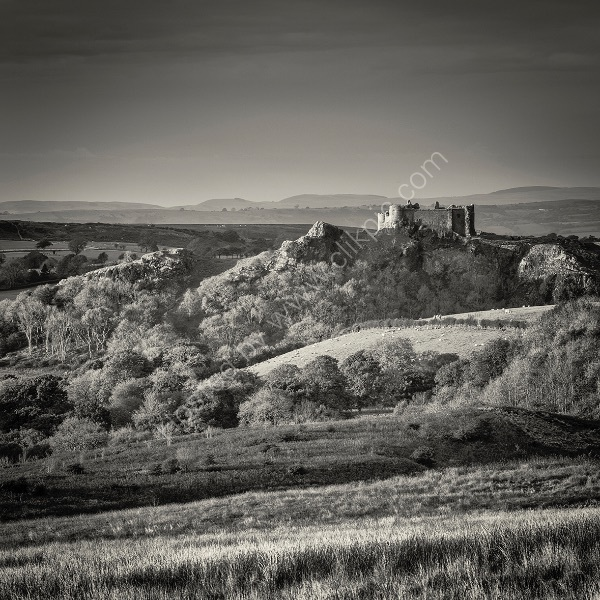 39 Carreg Cennen Castle