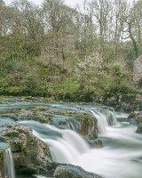 54 Cenarth Falls