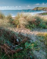 82 Through The Dunes At Manorbier