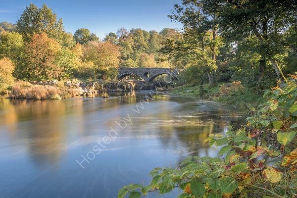 88 Cenarth Bridge