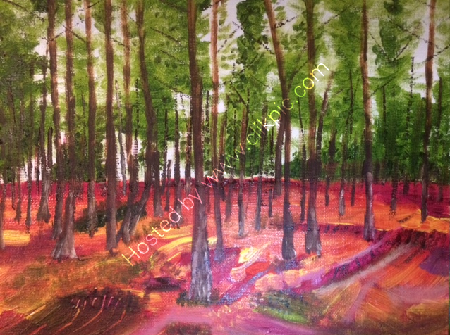 Roseisle Forest. 254 x 203mm. Oil